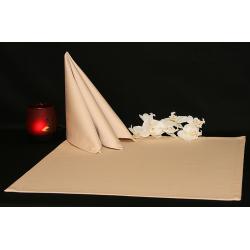Салфетки 45х45 см ткань Saten без рисунка цвет бежевый